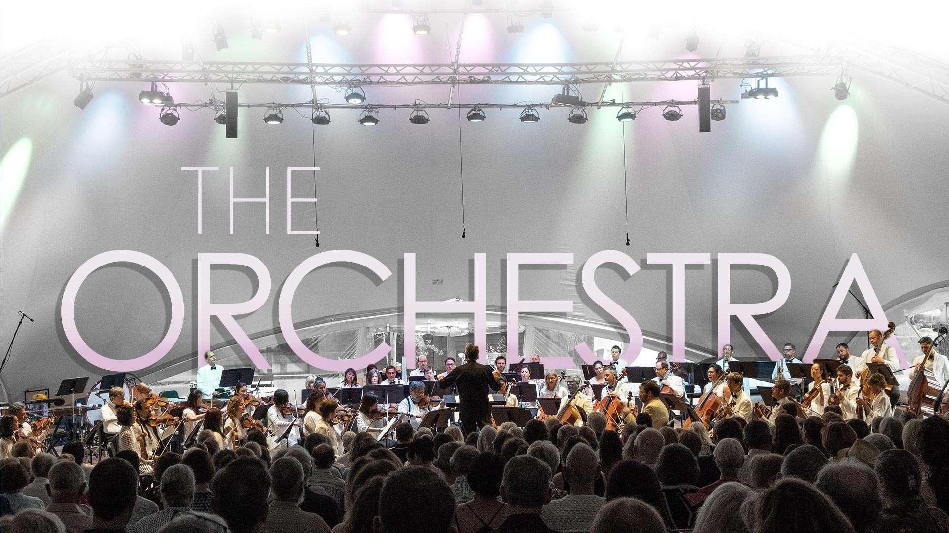 the-orchestra-dt-new