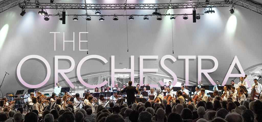 the-orchestra-lt