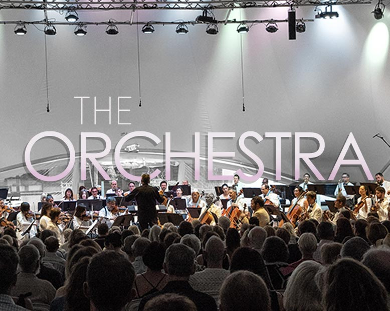 the-orchestra-t