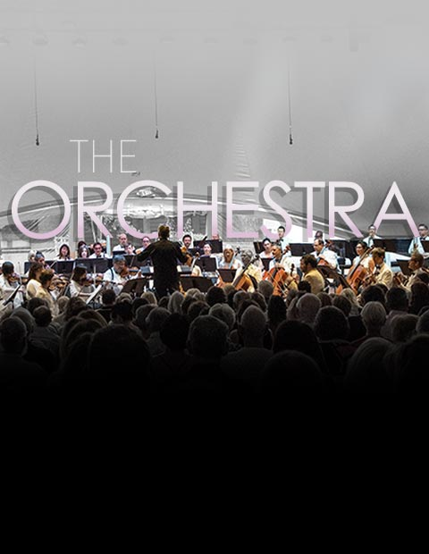 the-orchestra-m-4