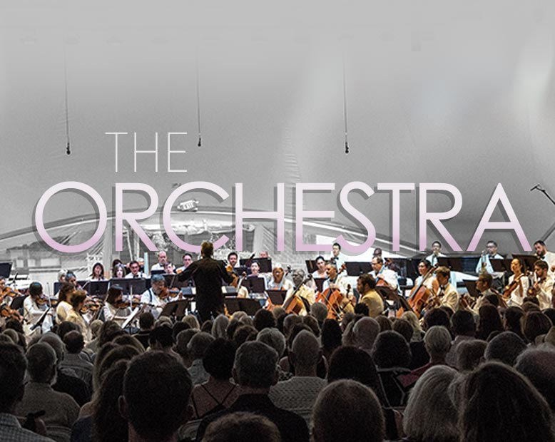 the-orchestra-t-2